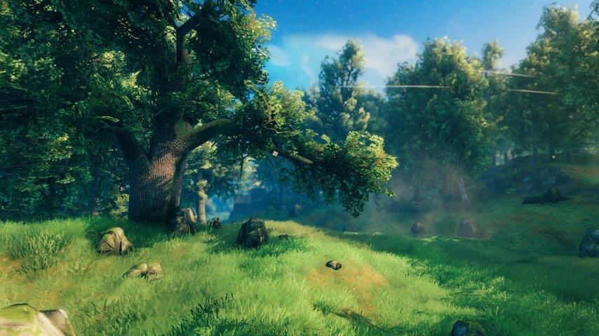 Valheim_screenshot4.jpg