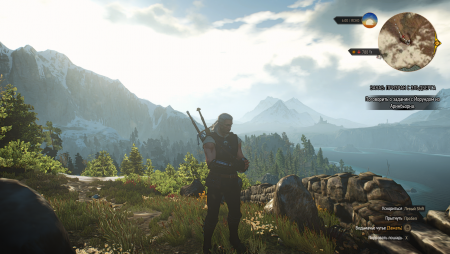 The Witcher 3 08.03.2020 14_01_04.png