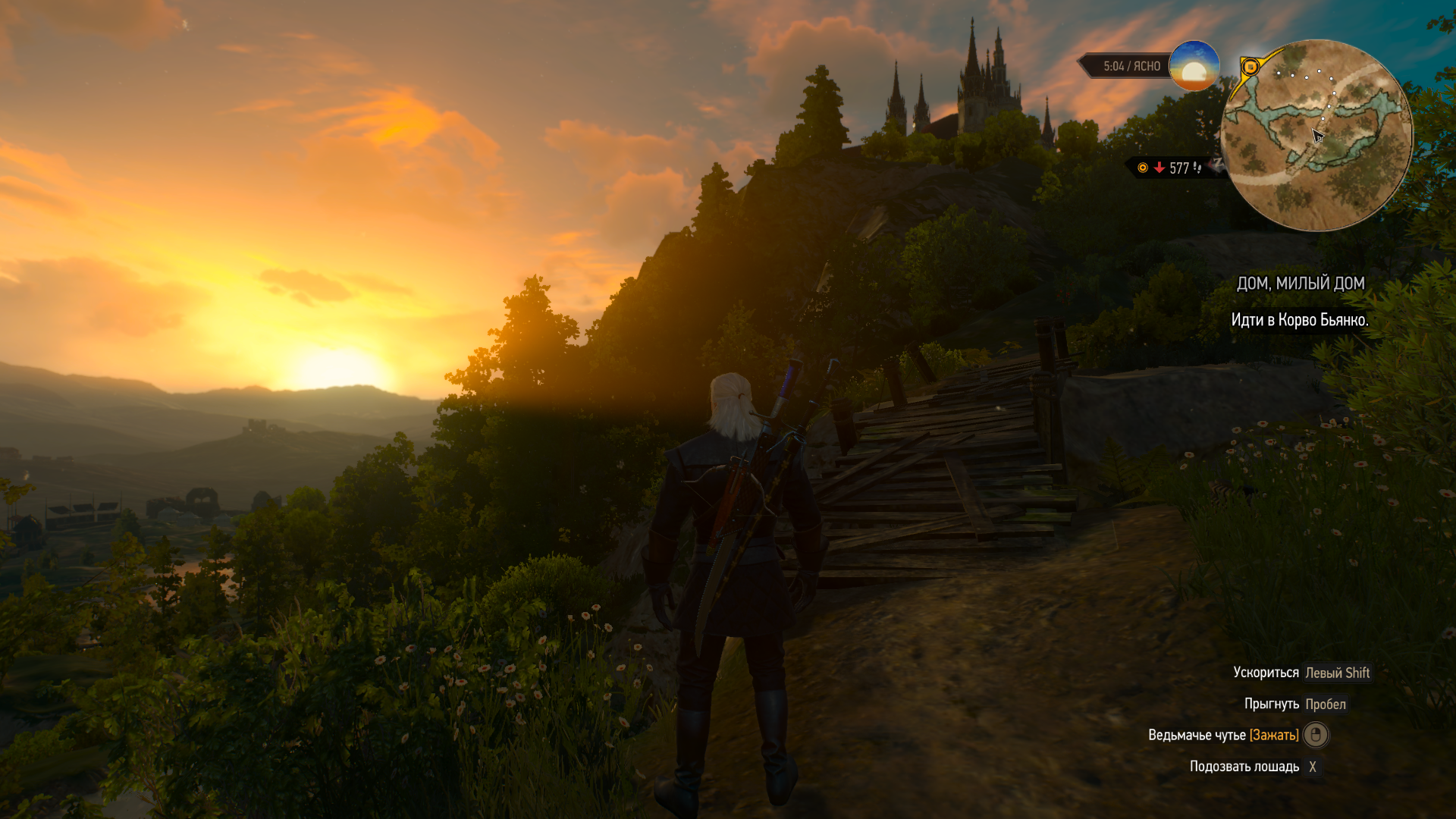 The Witcher 3 29.03.2020 15_57_06.png