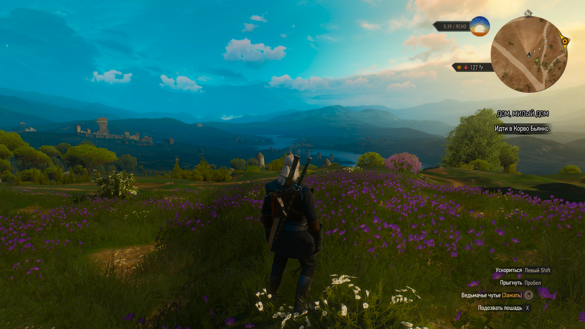 The Witcher 3 29.03.2020 15_59_29.png